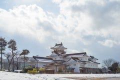 Toyama slott i den Toyama staden Royaltyfri Bild
