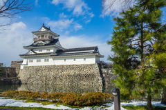 Toyama slott i den Toyama staden Arkivfoton