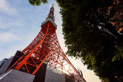 Toyko Tower at sunset. Toyko Tower during sunset by ant eye view, Japan Royalty Free Stock Photos
