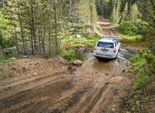 Toyota 4Runner SUV na śladzie w Kolorado Obraz Stock