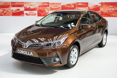 Toyota Corolla royaltyfri foto