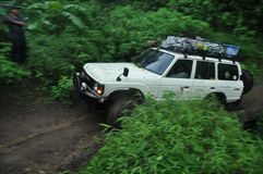 Toyota fj62 cruiser on the edge of pine forest and chasm Stock Photo
