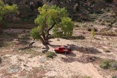 Toyota LandCruiser in Klein Grand Canyon stock afbeeldingen