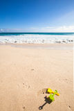 Toys at the beach. Travel background with a sandy beach, turquoise sea, white waves, a blue sky and some toys in the sand royalty free stock photos