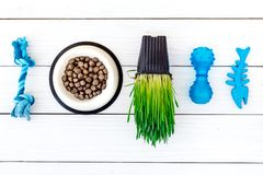 Toys for cat near dry food and grass in pot on white wooden background top view copyspace Royalty Free Stock Photos