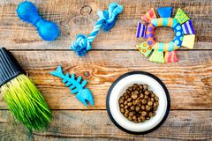 Toys for cat near dry food and grass in pot on wooden background top view Royalty Free Stock Photo