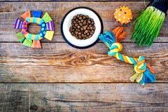 Toys for cat near dry food and grass in pot on wooden background top view copyspace Royalty Free Stock Images