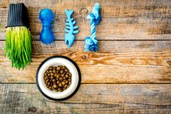 Toys for cat near dry food and grass in pot on wooden background top view copyspace Stock Images