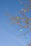 toys den deciduous multicolor skyen för blå jul treen Fotografering för Bildbyråer