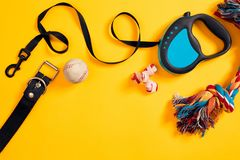 Toys -multi coloured rope, ball, leather leash and bone. Accessories for play and training on yellow background top view Stock Photos