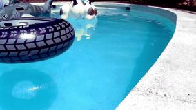 Toys in the pool stock footage