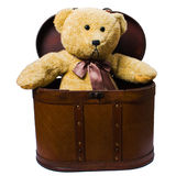 Toys Sitting In Vintage Case Stock Image
