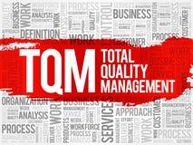 TQM - Nuvem da palavra da gestão de qualidade total ilustração do vetor