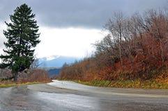 Tráfego de estrada molhado imagem de stock royalty free