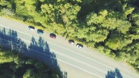 Tráfico de la carretera de los coches en el bosque, escénico aéreo metrajes