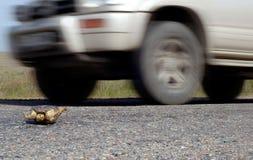 Tráfico del peligro y código de carretera Foto de archivo