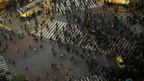 Tráfico peatonal Shibuya Tokio de la ciudad almacen de video