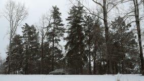 Tráfico que conduce a lo largo de autopista sin peaje durante tormenta de las nevadas fuertes metrajes