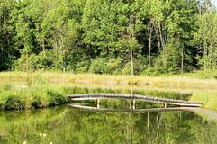 Trä överbrygga över det horisontaldamm - Royaltyfri Foto