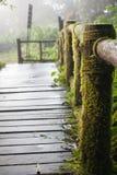Trä överbrygga Arkivfoto