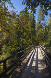 Trä överbrygga i skogen Arkivbilder