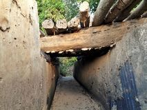 Trä överbryggar arkivfoton