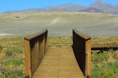 Trä överbryggar Death Valley Royaltyfri Bild
