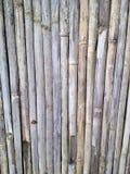 trä Arkivfoto
