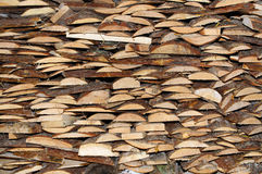 trä Arkivbild