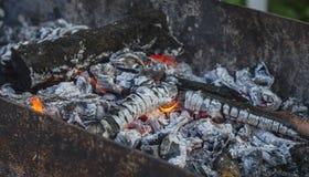 Trä bränner till kol med en flamma i en mongolisk bbq royaltyfri bild
