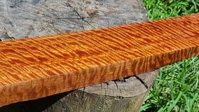 Trä den exotiska härliga modellen har tigerbandet eller lockigt bandkorn, för Afzelia trä för hantverk eller abstrakt konst royaltyfri bild