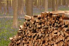 trä för 2 stapel Arkivfoto