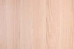 trä för bakgrundscloseuptextur royaltyfri bild