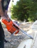 trä för cuttingmotorsaw Royaltyfri Fotografi