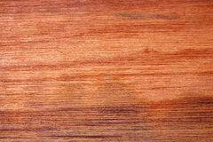 trä för fint korn Royaltyfri Fotografi