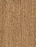 trä för merbaotexturfanér Royaltyfri Bild