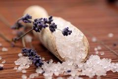 trä för salt skyffel för bad litet Fotografering för Bildbyråer