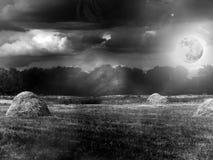 trä för sky för oklarhetsdimmamoon arkivbilder
