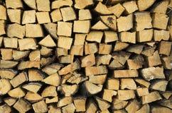 Trä för vinter Royaltyfria Bilder