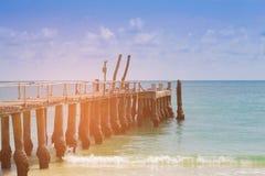 Trä gå över stranden som är naturlig arkivbilder