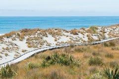 Trä gå vägen på bakgrund för horisont för sandstrandhavet royaltyfria bilder