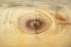 Trä gnarl textur Arkivbild