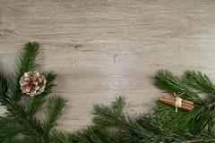 Trä, grankotte och grangräsplan Royaltyfri Fotografi