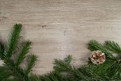 Trä, grankotte och grangräsplan Royaltyfri Foto