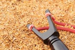 Trä handcraft på skalbakgrund Arkivfoton