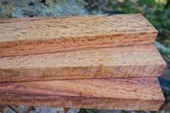Trä har tigerbandet eller lockigt bandkorn, den exotiska härliga modellen för trä för hantverk royaltyfria foton