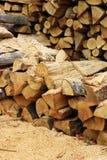 Trä inom sawmill royaltyfri bild