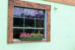 Trä inramat fönster mot en mintkaramellgräsplanvägg Royaltyfria Bilder