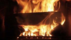 Trä loggar bränning i en spis stock video