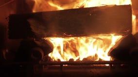 Trä loggar bränning i en spis lager videofilmer